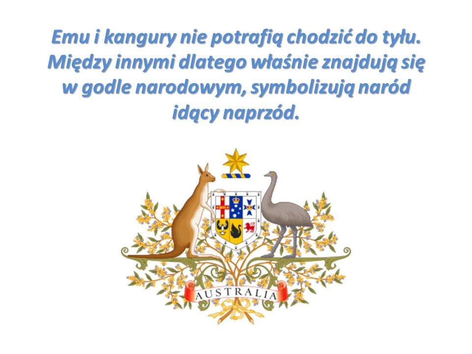 Emu i kangury nie potrafią chodzić do tyłu. Między innymi dlatego właśnie znajdują się w godle narodowym, symbolizują naród idący naprzód.