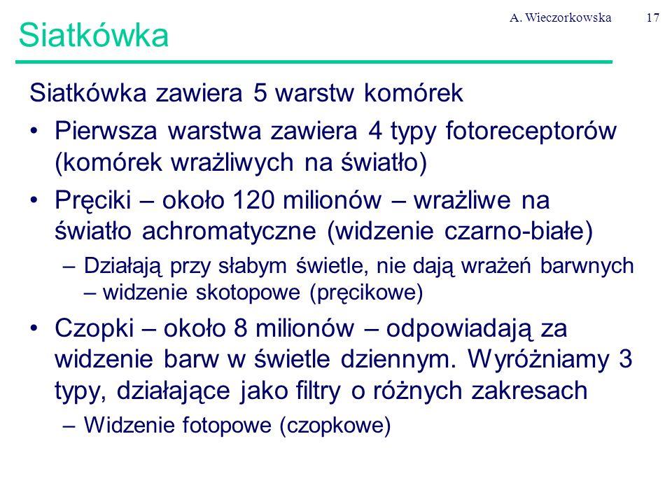 A. Wieczorkowska17 Siatkówka Siatkówka zawiera 5 warstw komórek Pierwsza warstwa zawiera 4 typy fotoreceptorów (komórek wrażliwych na światło) Pręciki
