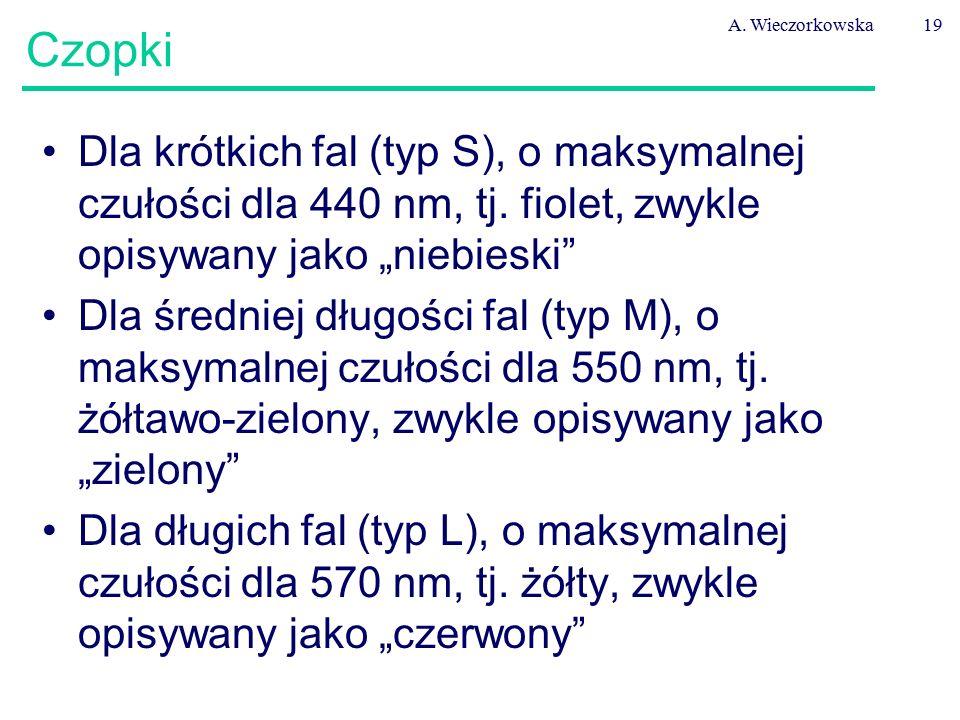 """A. Wieczorkowska19 Czopki Dla krótkich fal (typ S), o maksymalnej czułości dla 440 nm, tj. fiolet, zwykle opisywany jako """"niebieski"""" Dla średniej dług"""