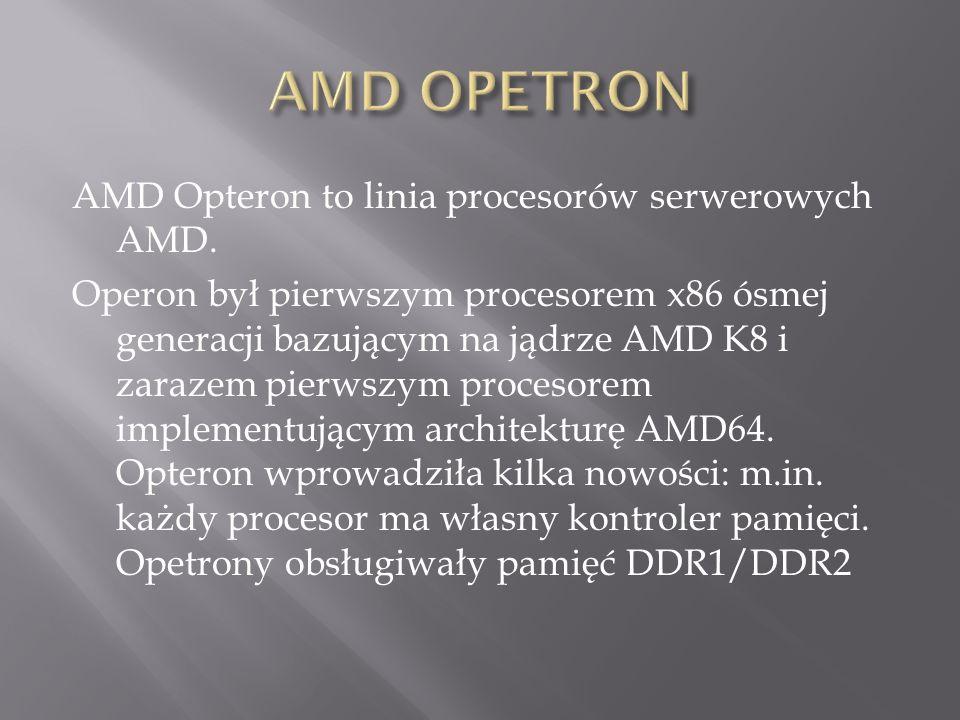 AMD Opteron to linia procesorów serwerowych AMD.