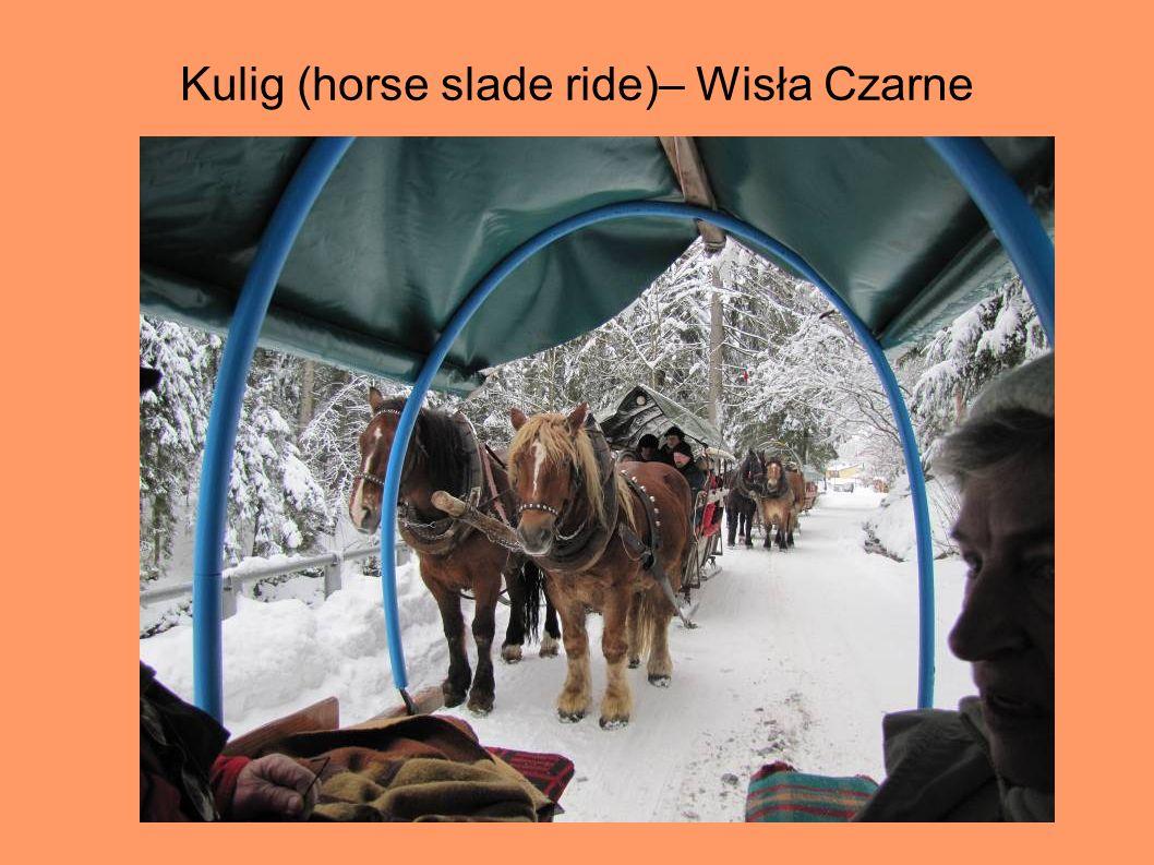 Kulig (horse slade ride)