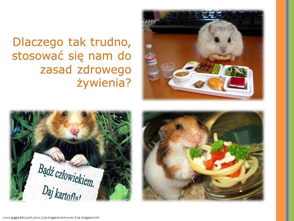 Dlaczego tak trudno, stosować się nam do zasad zdrowego żywienia? www.giggledaily.com,www.1.bp.blogspot.com,www.2.bp.blogspot.com