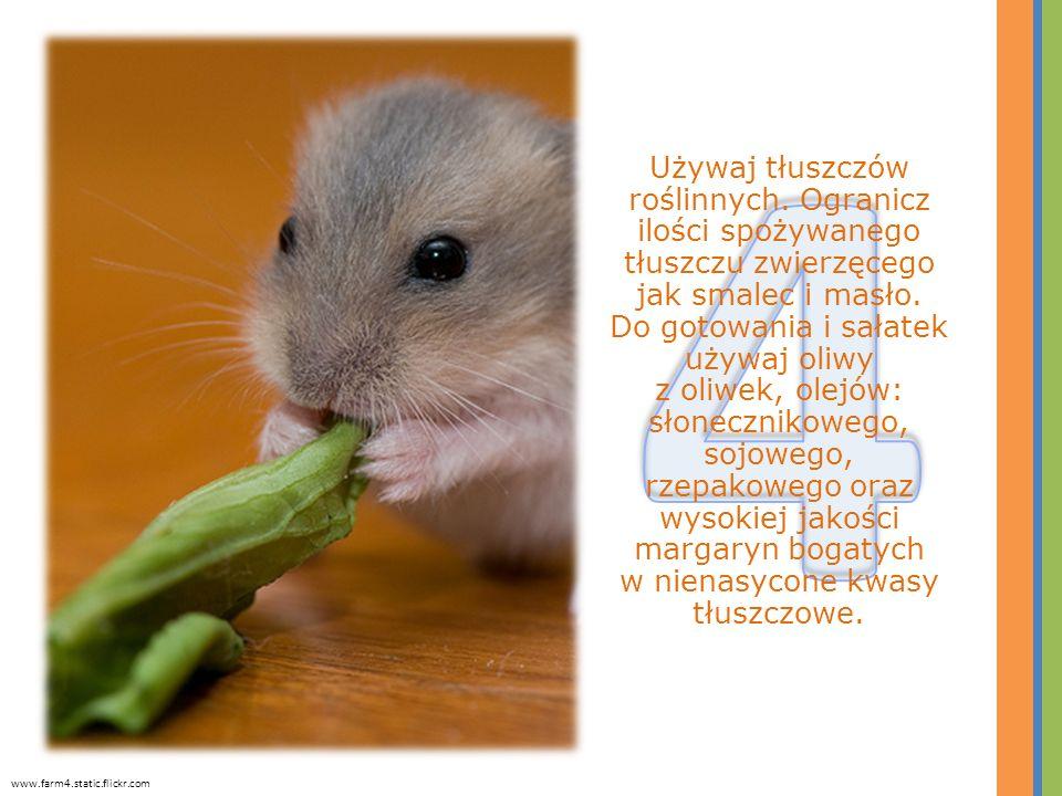 Używaj tłuszczów roślinnych. Ogranicz ilości spożywanego tłuszczu zwierzęcego jak smalec i masło. Do gotowania i sałatek używaj oliwy z oliwek, olejów