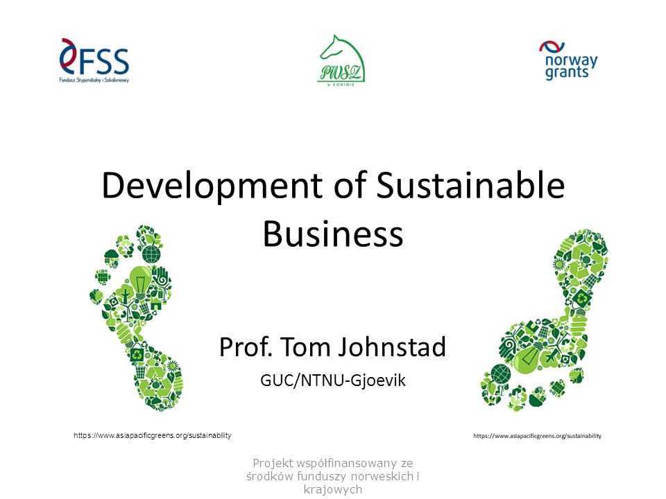 Sustainability – Dimensions and some Indicators Projekt współfinansowany ze środków funduszy norweskich i krajowych Economy Profits/surplus/balance Avoid waste/Lean R&D&I Environment Pollution (air/water/land) CO2-emission Natural resources use Energy use Water use Social Heath/work environment/safety Education/skills/teaching Rights/wages/participation Ethics Sustainability vision and mission Anti-corruption/black labor/children labor Governance Comply to laws and regulations Transparency/reporting  A lot of reporting, but most companies do have the information – if not, the access would make for a better company