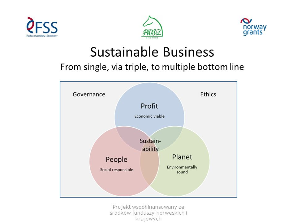 Sustainable Business From single, via triple, to multiple bottom line Projekt współfinansowany ze środków funduszy norweskich i krajowych