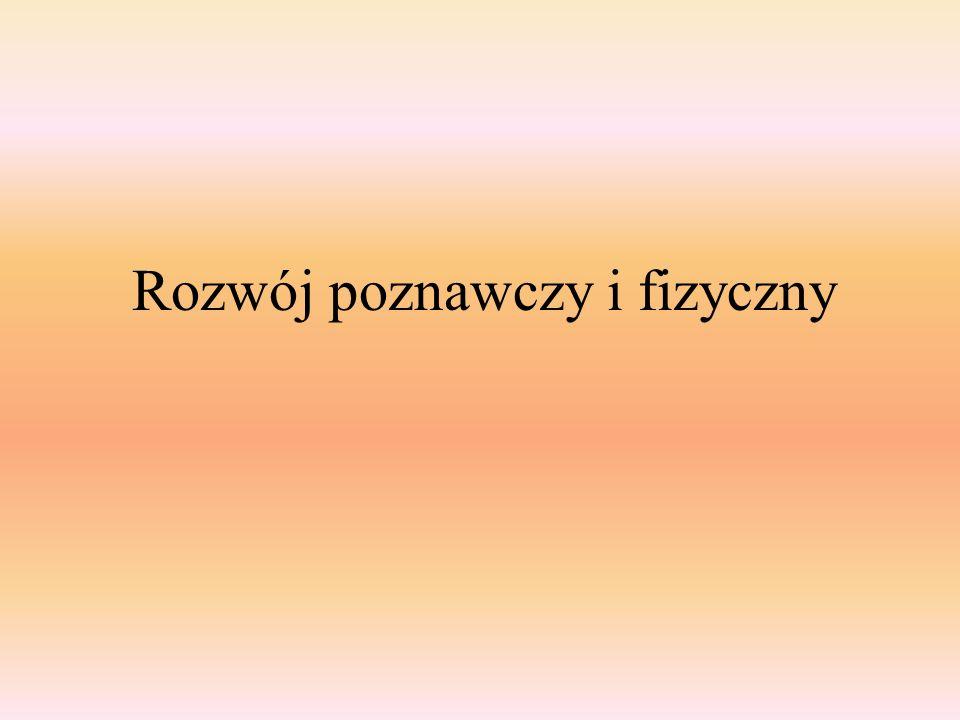 ► sprawność w stosowaniu samodzielnych symboli językowych rzeczownik: użycie końcówki z innej deklinacji (męskie), np.