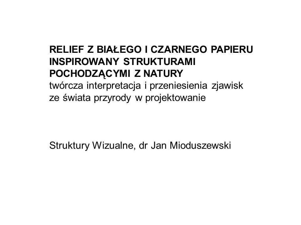 RELIEF Z BIAŁEGO I CZARNEGO PAPIERU INSPIROWANY STRUKTURAMI POCHODZĄCYMI Z NATURY twórcza interpretacja i przeniesienia zjawisk ze świata przyrody w projektowanie Struktury Wizualne, dr Jan Mioduszewski