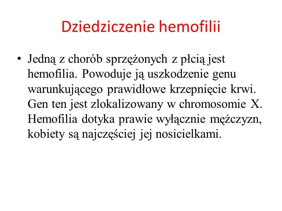 H – allel dominujący – warunkuje normalne krzepnięcie krwi, h – allel recesywny – warunkuje wystąpienie hemofilii, X, Y – chromosomy płci.