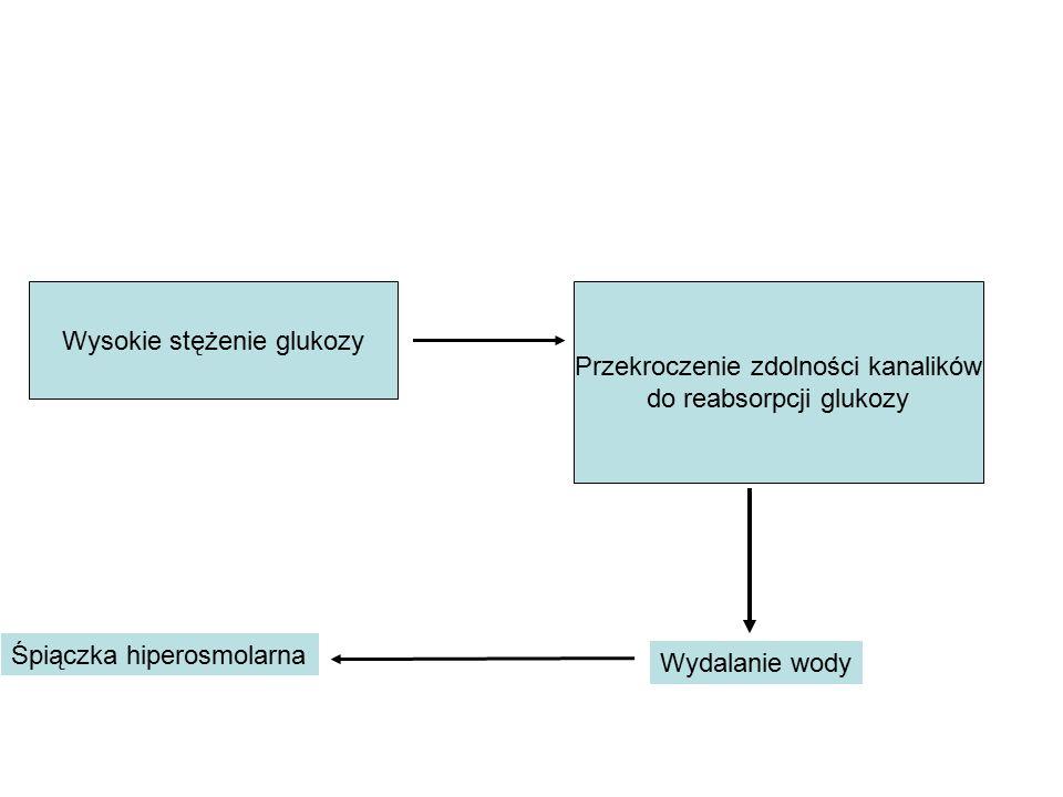 Wysokie stężenie glukozy Przekroczenie zdolności kanalików do reabsorpcji glukozy Wydalanie wody Śpiączka hiperosmolarna