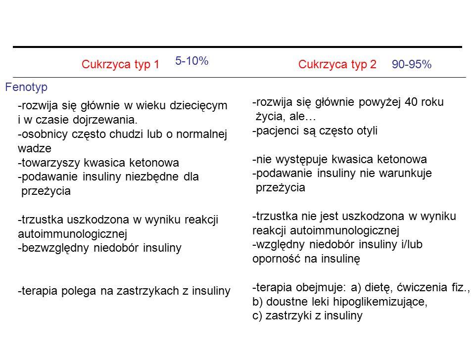 Cukrzyca typ 1Cukrzyca typ 2 Fenotyp -rozwija się głównie w wieku dziecięcym i w czasie dojrzewania. -osobnicy często chudzi lub o normalnej wadze -to