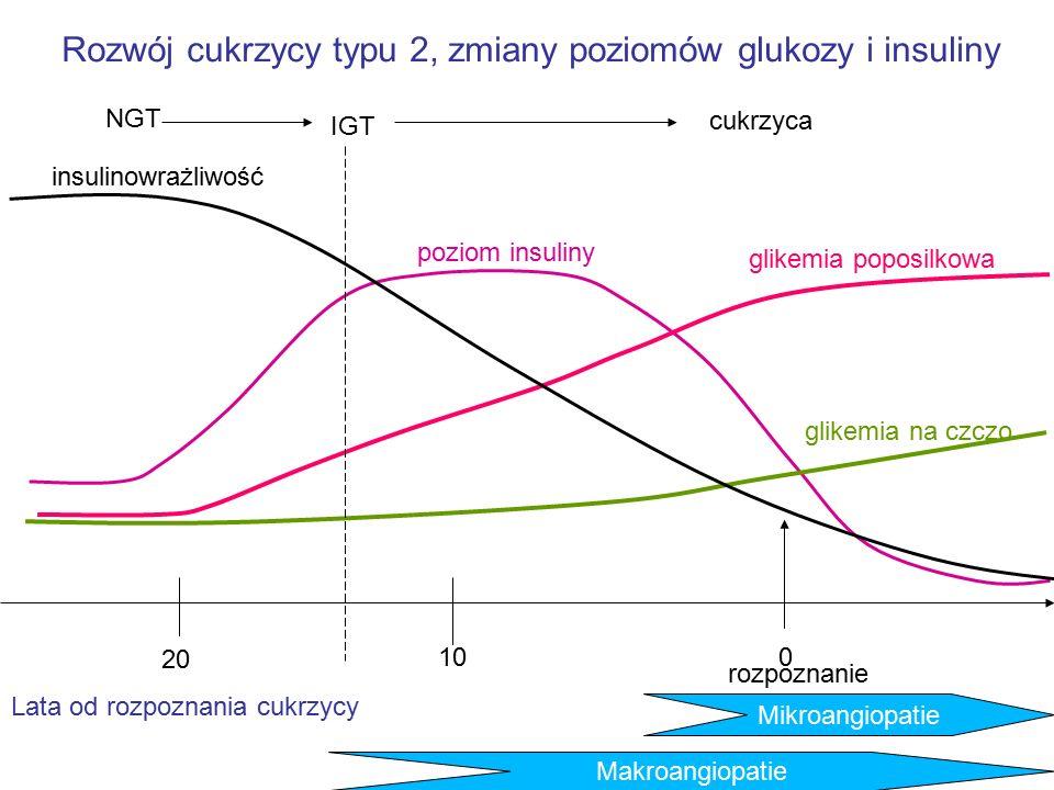 Rozwój cukrzycy typu 2, zmiany poziomów glukozy i insuliny insulinowrażliwość poziom insuliny glikemia poposilkowa glikemia na czczo 0 rozpoznanie 20