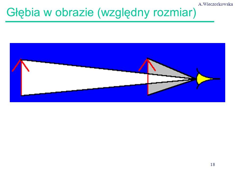 A.Wieczorkowska 18 Głębia w obrazie (względny rozmiar)