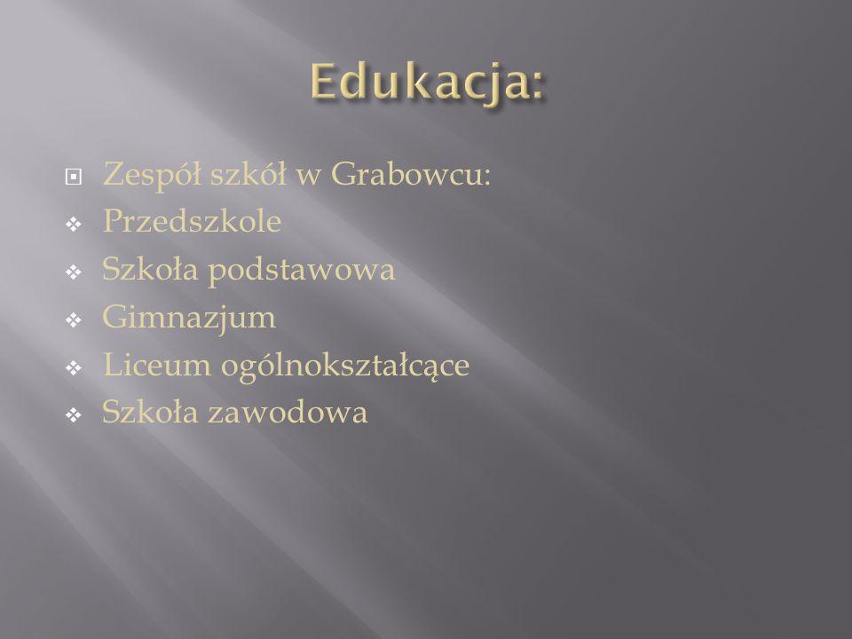  Zespół szkół w Grabowcu:  Przedszkole  Szkoła podstawowa  Gimnazjum  Liceum ogólnokształcące  Szkoła zawodowa