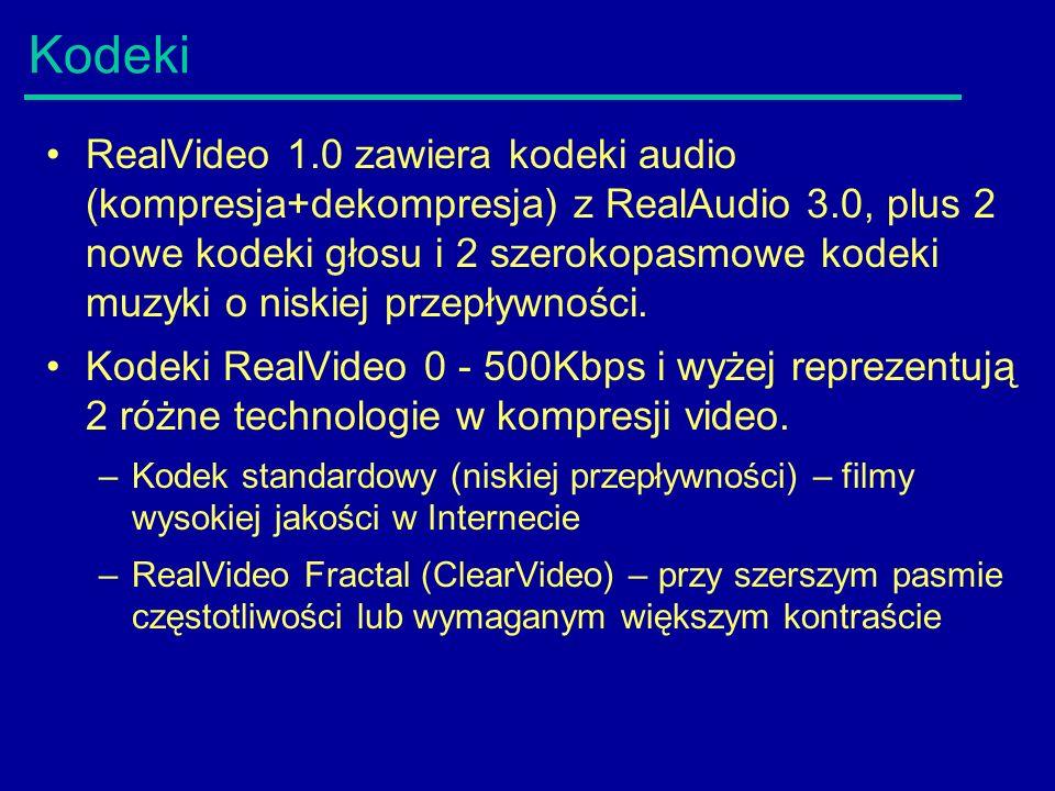 Kodeki RealVideo 1.0 zawiera kodeki audio (kompresja+dekompresja) z RealAudio 3.0, plus 2 nowe kodeki głosu i 2 szerokopasmowe kodeki muzyki o niskiej przepływności.