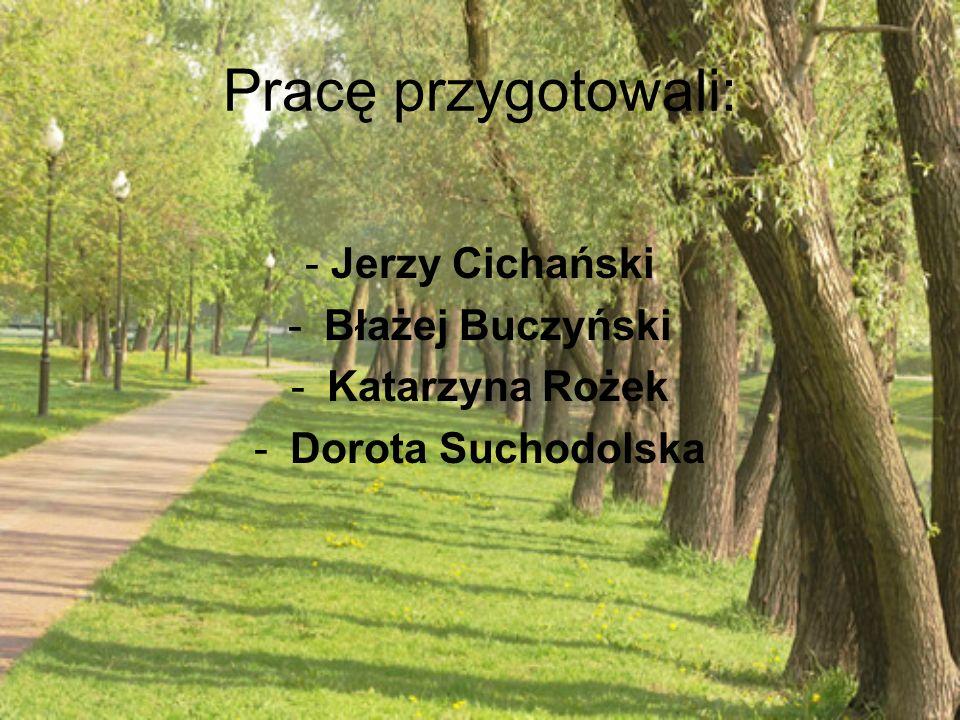 Pracę przygotowali: - Jerzy Cichański -Błażej Buczyński -Katarzyna Rożek -Dorota Suchodolska