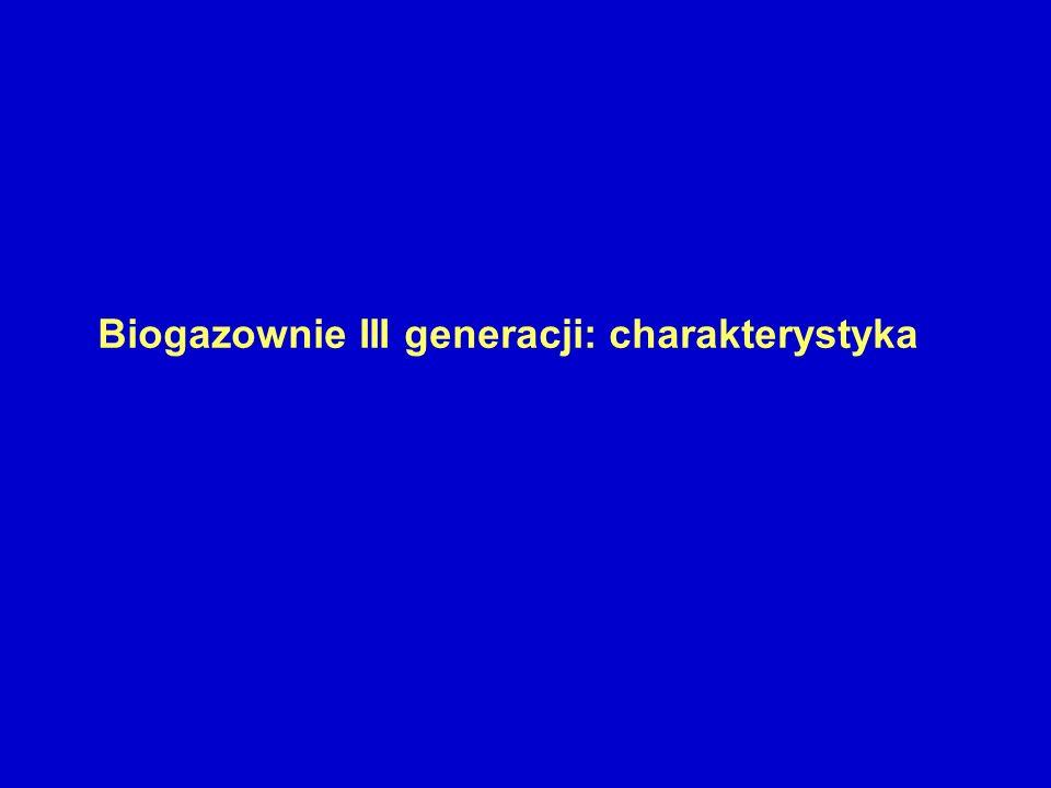 Biogazownie III generacji: charakterystyka