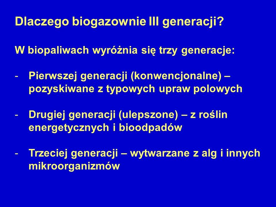 Dlaczego biogazownie III generacji? W biopaliwach wyróżnia się trzy generacje: -Pierwszej generacji (konwencjonalne) – pozyskiwane z typowych upraw po