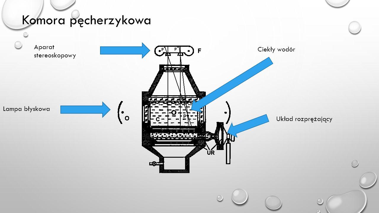 Komora pęcherzykowa Aparat stereoskopowy Lampa błyskowa Ciekły wodór Układ rozprężający