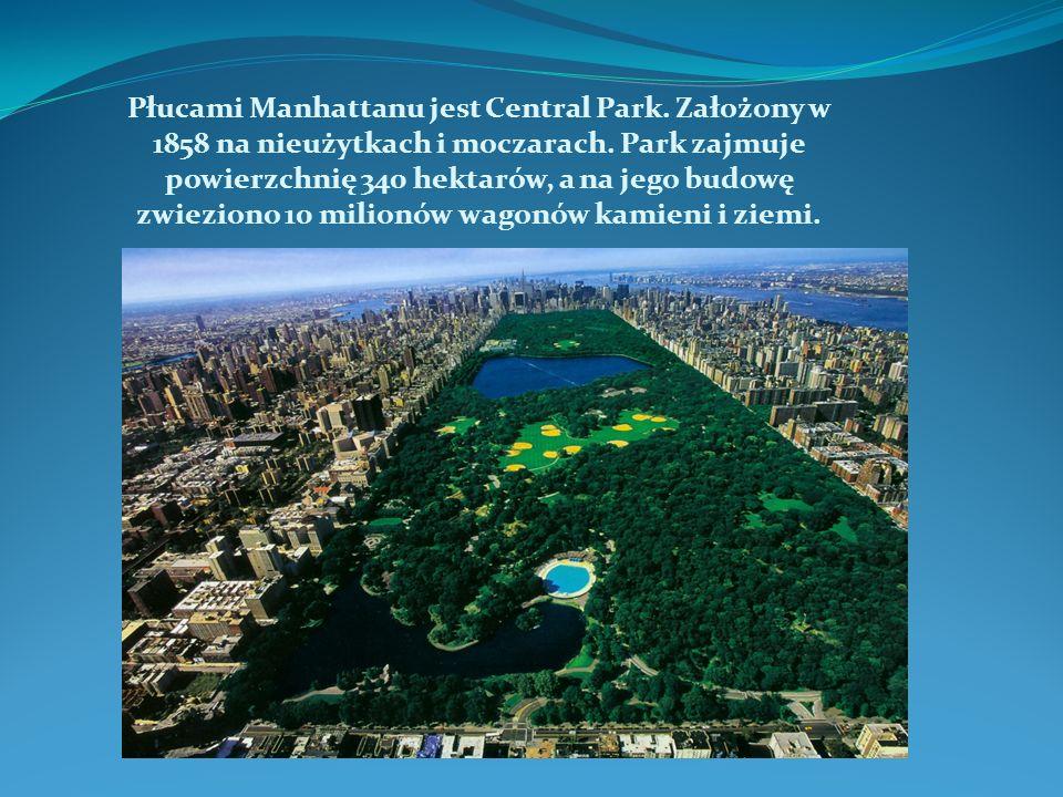 Płucami Manhattanu jest Central Park. Założony w 1858 na nieużytkach i moczarach.