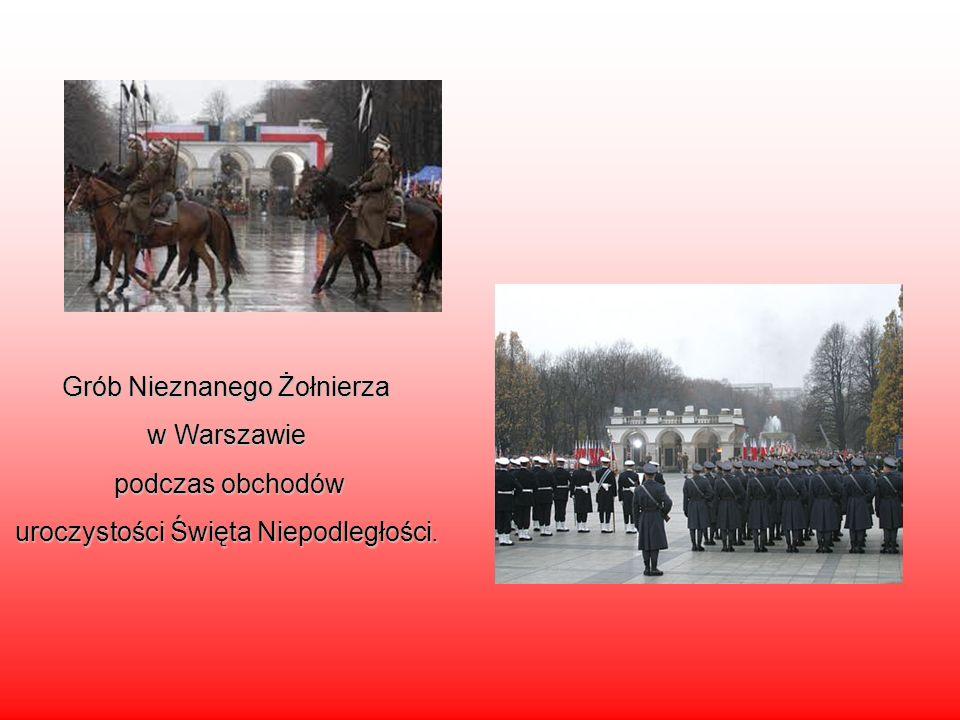 Grób Nieznanego Żołnierza w Warszawie podczas obchodów podczas obchodów uroczystości Święta Niepodległości.