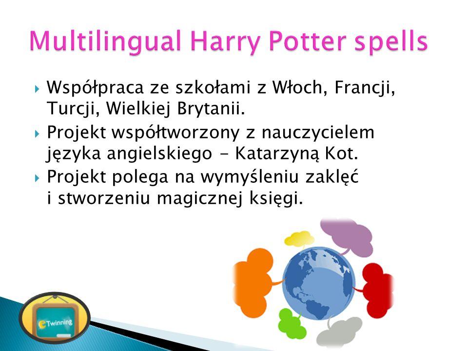  Współpraca ze szkołami z Włoch, Francji, Turcji, Wielkiej Brytanii.  Projekt współtworzony z nauczycielem języka angielskiego - Katarzyną Kot.  Pr