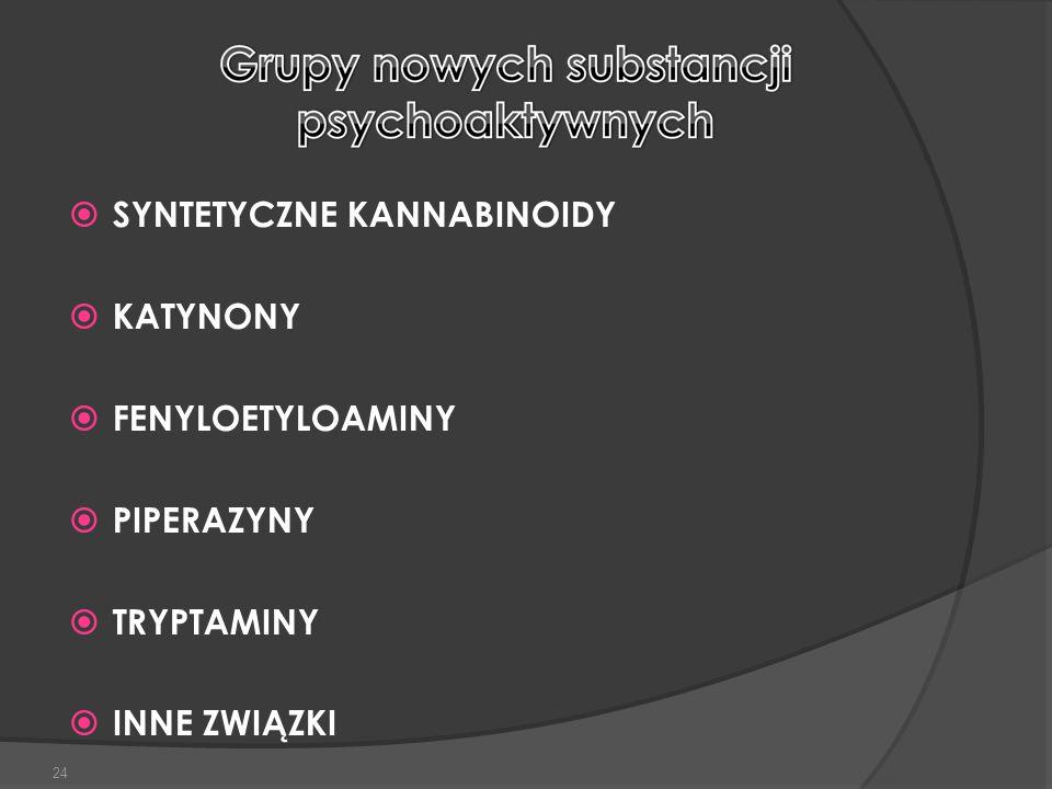  SYNTETYCZNE KANNABINOIDY  KATYNONY  FENYLOETYLOAMINY  PIPERAZYNY  TRYPTAMINY  INNE ZWIĄZKI 24