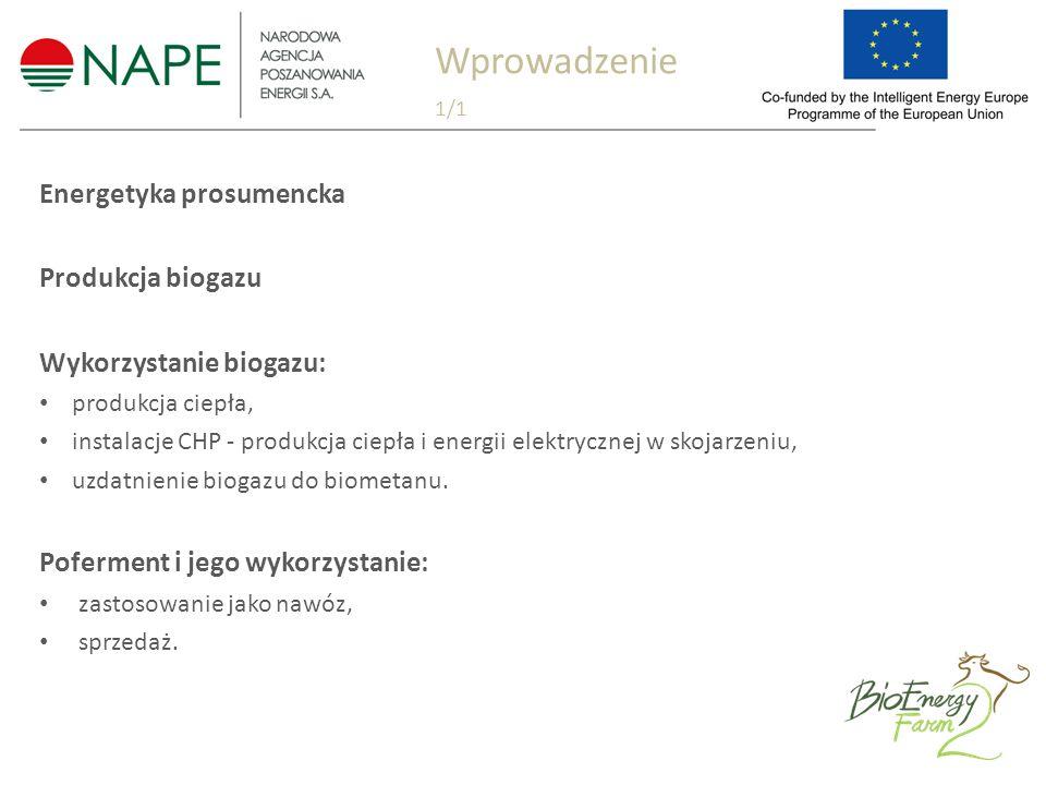 Energetyka prosumencka Produkcja biogazu Wykorzystanie biogazu: produkcja ciepła, instalacje CHP - produkcja ciepła i energii elektrycznej w skojarzeniu, uzdatnienie biogazu do biometanu.