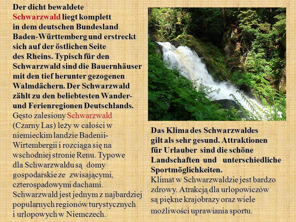 Der dicht bewaldete Schwarzwald liegt komplett in dem deutschen Bundesland Baden-Württemberg und erstreckt sich auf der östlichen Seite des Rheins.