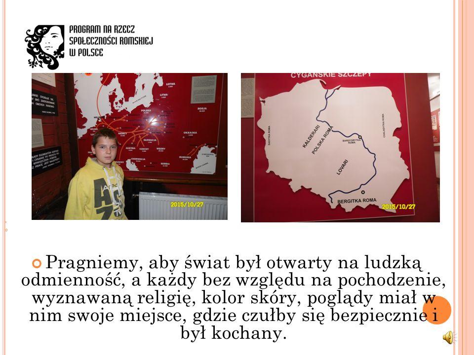 Kolekcja romska powstała w Tarnowie w 1979 roku, kiedy zorganizowano tutaj pierwszą w Polsce wystawę o tematyce romskiej.
