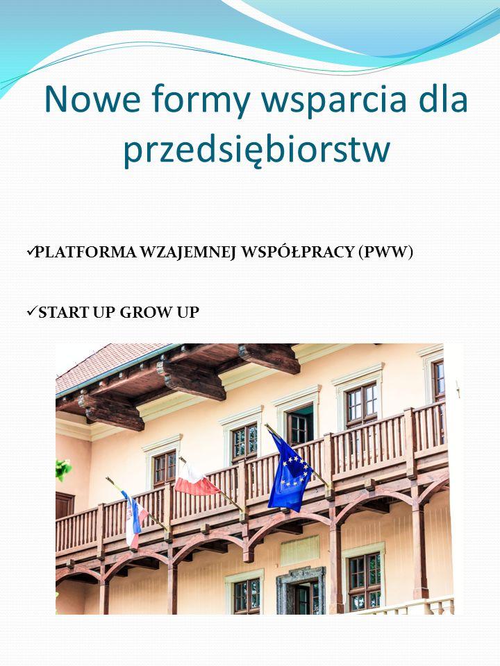 Nowe formy wsparcia dla przedsiębiorstw PLATFORMA WZAJEMNEJ WSPÓŁPRACY (PWW) START UP GROW UP
