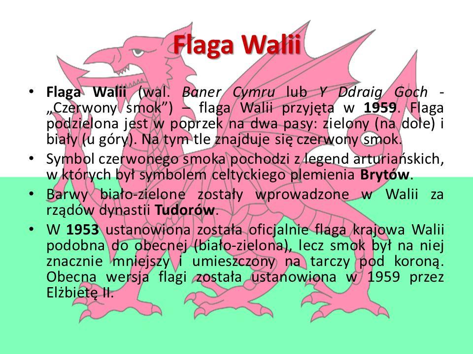 """Flaga Walii Flaga Walii (wal. Baner Cymru lub Y Ddraig Goch - """"Czerwony smok"""") – flaga Walii przyjęta w 1959. Flaga podzielona jest w poprzek na dwa p"""