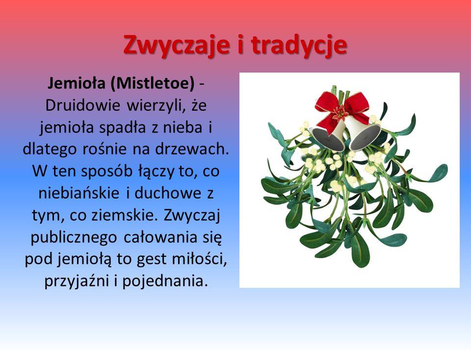 Jemioła (Mistletoe) - Druidowie wierzyli, że jemioła spadła z nieba i dlatego rośnie na drzewach. W ten sposób łączy to, co niebiańskie i duchowe z ty