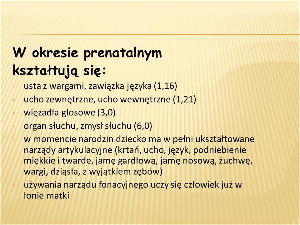 Okres przygotowawczy: od 0 do 9 miesiąca życia płodowego Okres melodii, sygnału apelu: od 0 do 1 roku życia Okres wyrazu, sygnału jednoklasowego: od 1 do 2 roku życia Okres zdania, sygnału dwuklasowego: od 2 do 3 roku życia Okres swoistej mowy dziecka, swoistych form językowych: od 3- 7