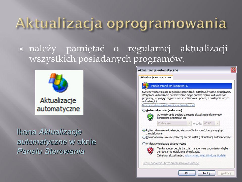  należy pamiętać o regularnej aktualizacji wszystkich posiadanych programów. Ikona Aktualizacje automatyczne w oknie Panelu Sterowania