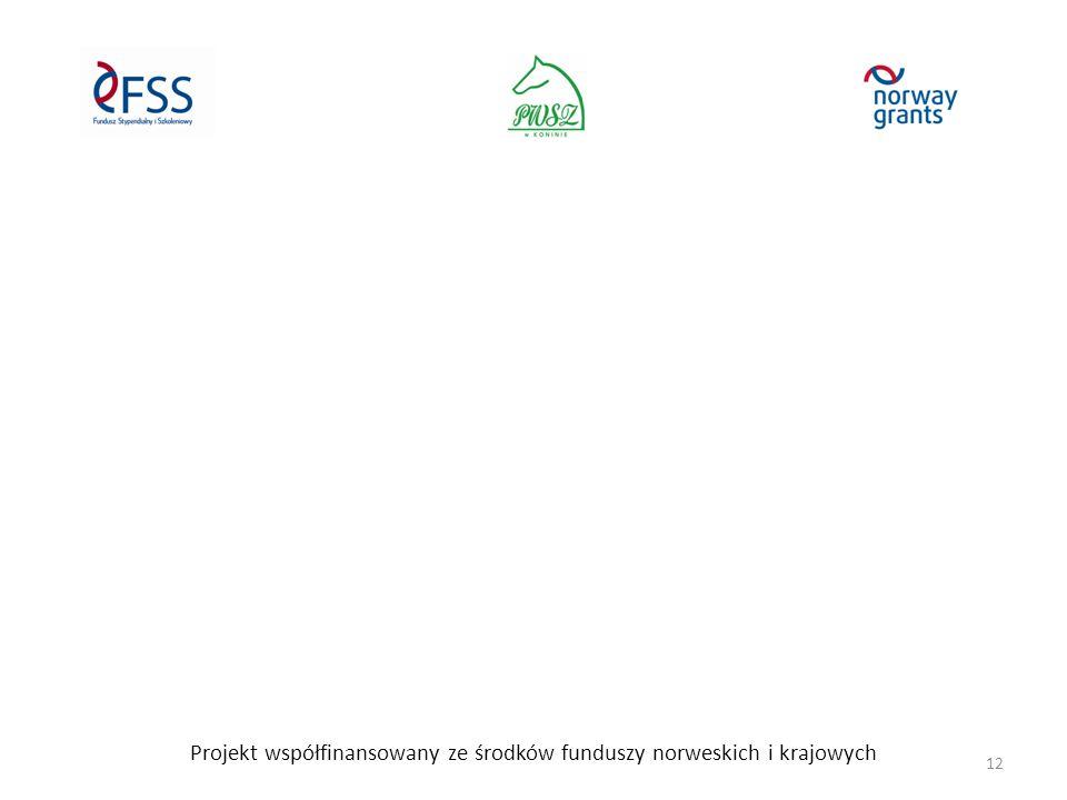 Projekt współfinansowany ze środków funduszy norweskich i krajowych 12