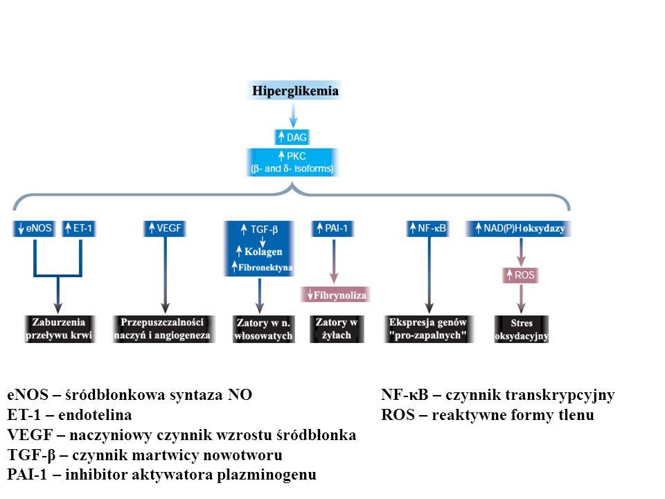 eNOS – śródbłonkowa syntaza NO ET-1 – endotelina VEGF – naczyniowy czynnik wzrostu śródbłonka TGF-β – czynnik martwicy nowotworu PAI-1 – inhibitor akt