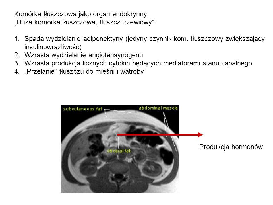 """Komórka tłuszczowa jako organ endokrynny. """"Duża komórka tłuszczowa, tłuszcz trzewiowy"""": 1.Spada wydzielanie adiponektyny (jedyny czynnik kom. tłuszczo"""