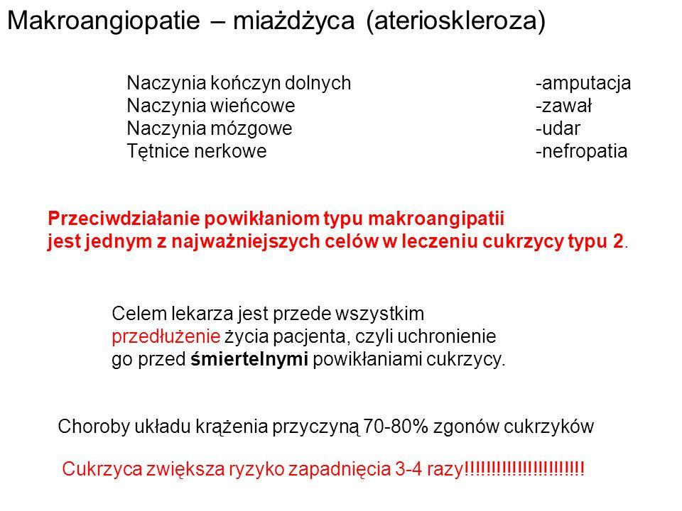 Lipotoksyczność
