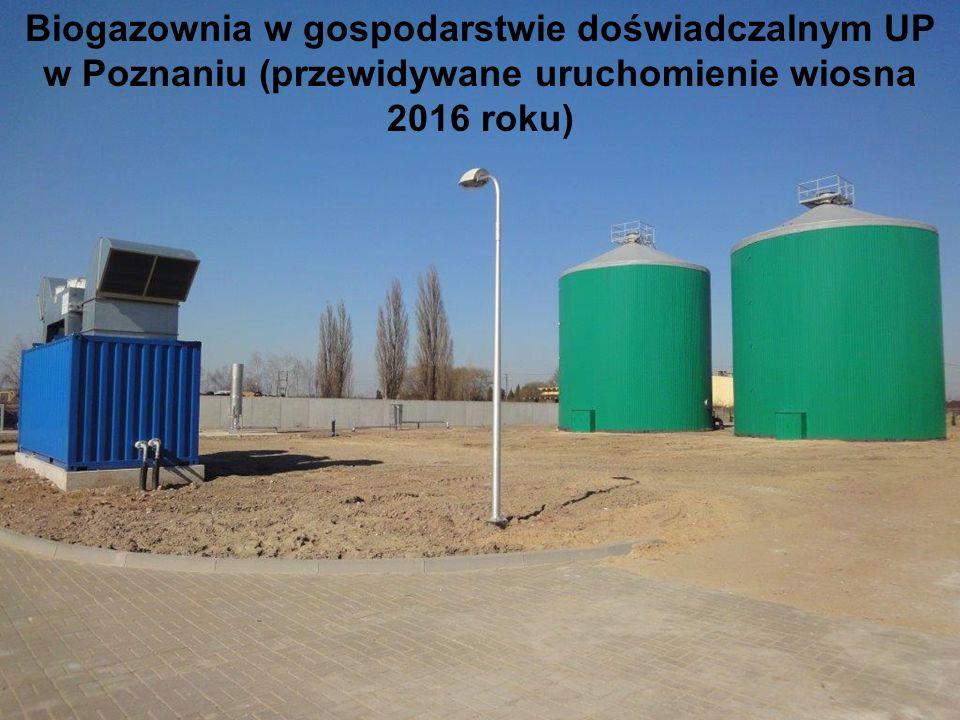 Biogazownia w gospodarstwie doświadczalnym UP w Poznaniu (przewidywane uruchomienie wiosna 2016 roku)