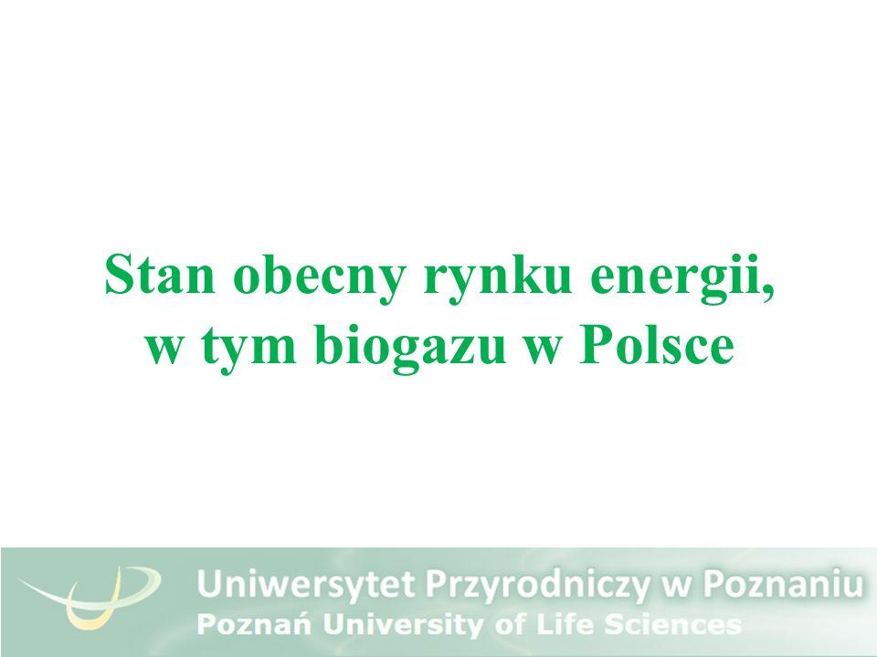 Stan obecny rynku energii, w tym biogazu w Polsce