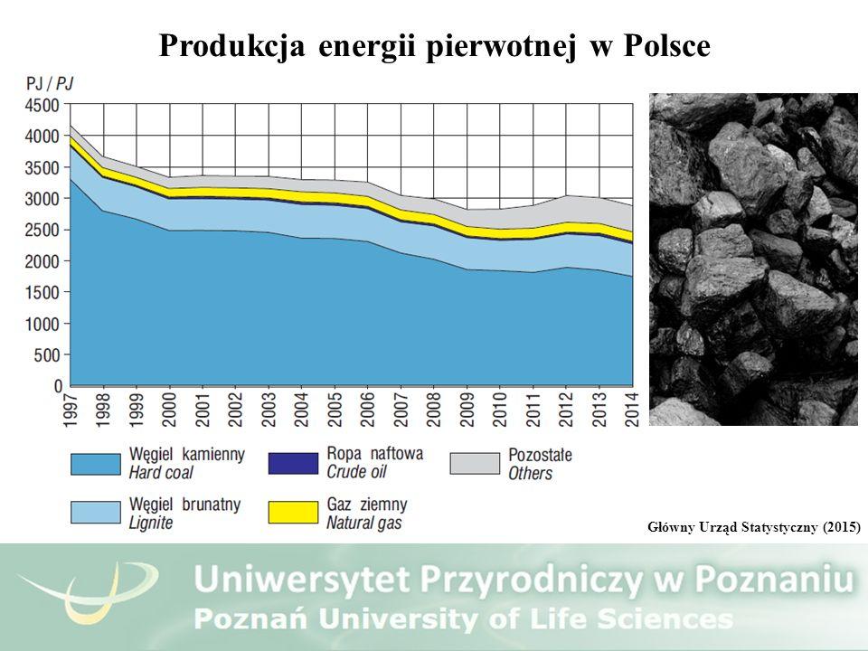 Produkcja energii pierwotnej w Polsce Główny Urząd Statystyczny (2015)