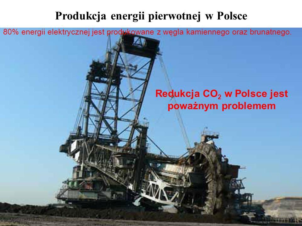 Redukcja CO 2 w Polsce jest poważnym problemem Produkcja energii pierwotnej w Polsce 80% energii elektrycznej jest produkowane z węgla kamiennego oraz