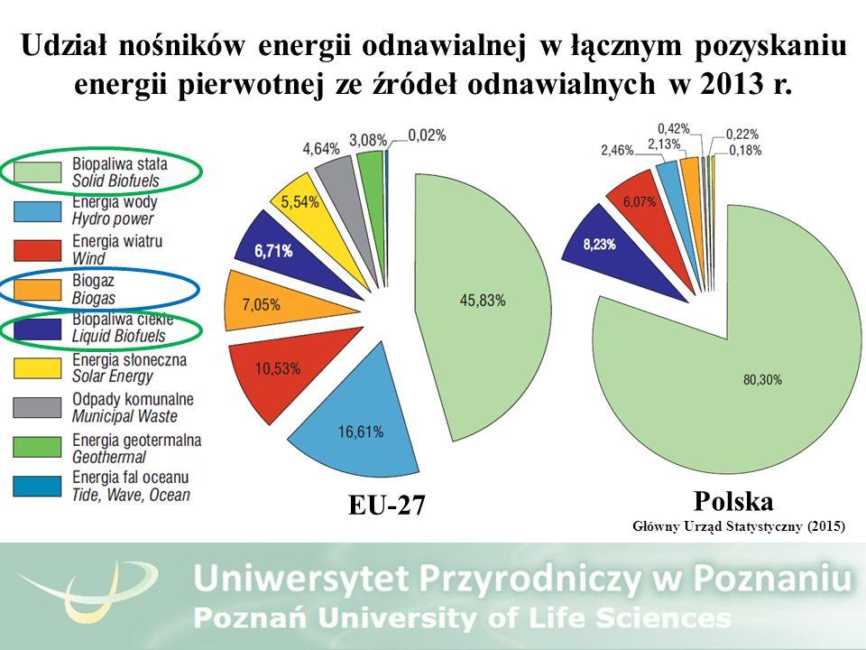 Udział nośników energii odnawialnej w łącznym pozyskaniu energii pierwotnej ze źródeł odnawialnych w 2013 r. EU-27 Polska Główny Urząd Statystyczny (2