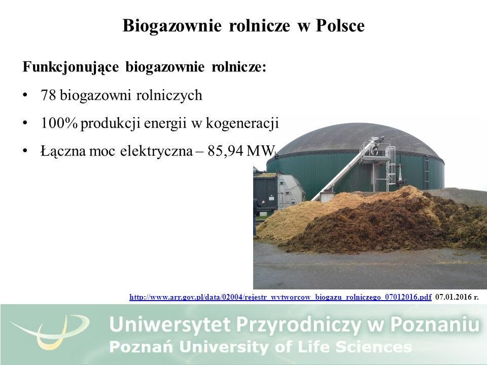 Biogazownie rolnicze w Polsce Funkcjonujące biogazownie rolnicze: 78 biogazowni rolniczych 100% produkcji energii w kogeneracji Łączna moc elektryczna