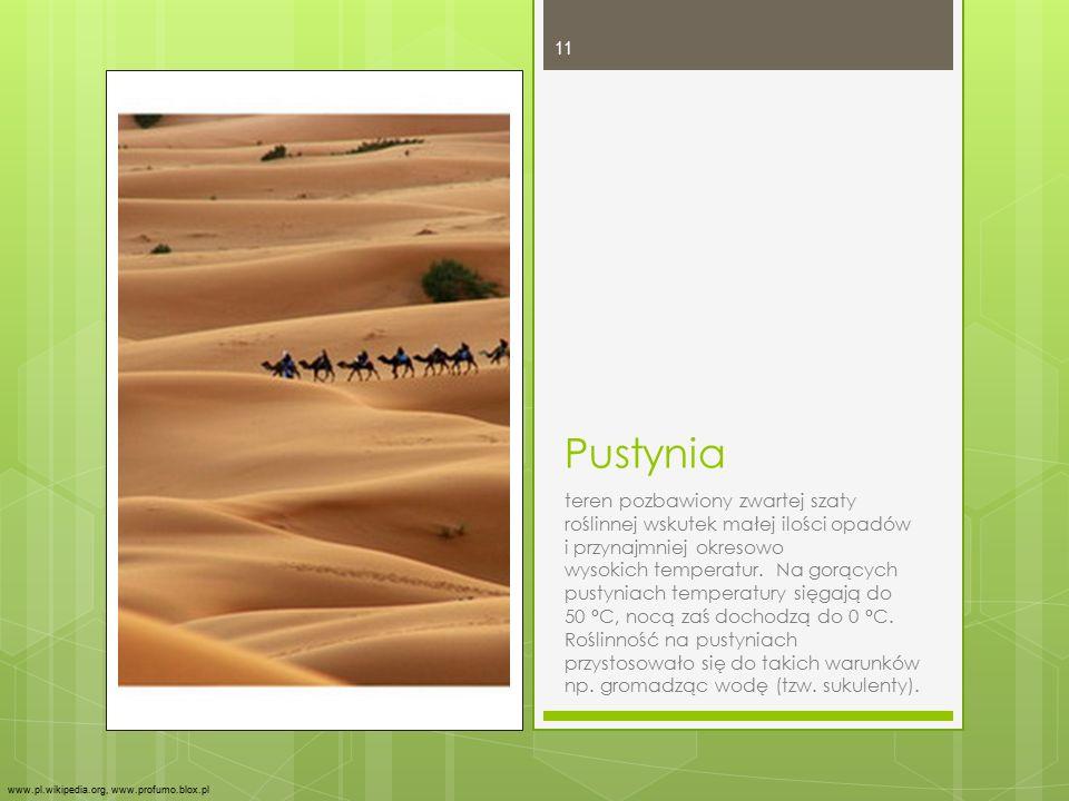 Pustynia teren pozbawiony zwartej szaty roślinnej wskutek małej ilości opadów i przynajmniej okresowo wysokich temperatur. Na gorących pustyniach temp