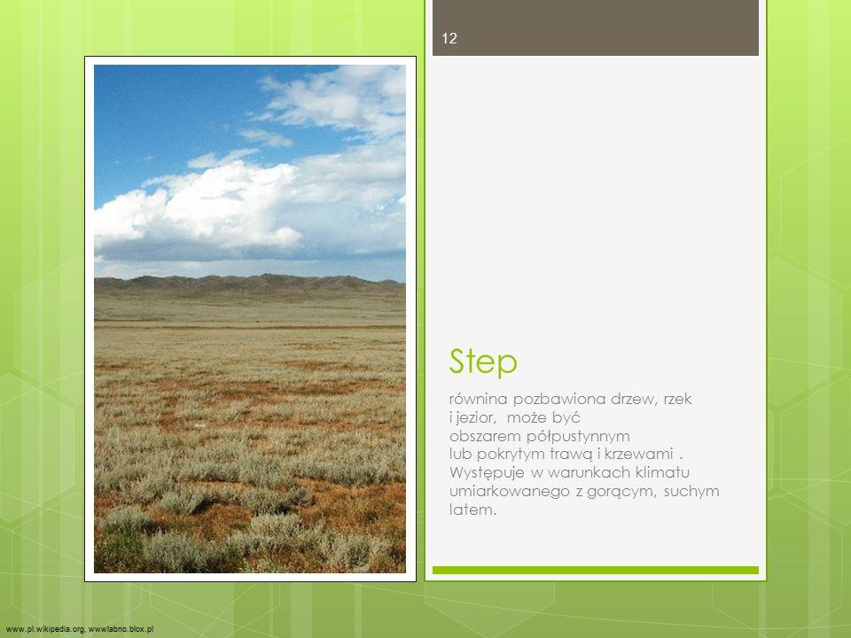 Step równina pozbawiona drzew, rzek i jezior, może być obszarem półpustynnym lub pokrytym trawą i krzewami. Występuje w warunkach klimatu umiarkowaneg
