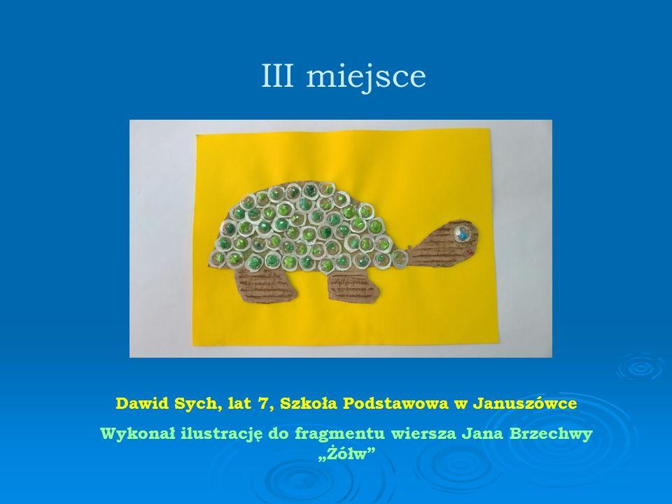 """Dawid Sych, lat 7, Szkoła Podstawowa w Januszówce Wykonał ilustrację do fragmentu wiersza Jana Brzechwy """"Żółw III miejsce"""