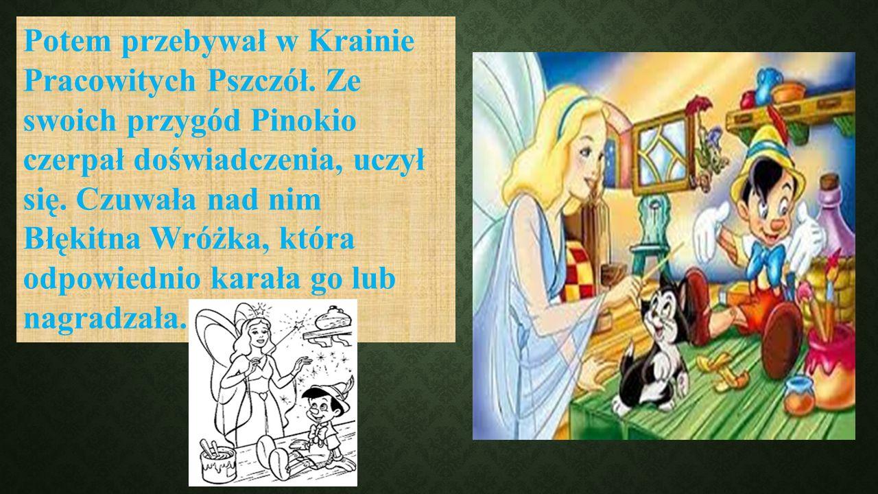 Potem przebywał w Krainie Pracowitych Pszczół. Ze swoich przygód Pinokio czerpał doświadczenia, uczył się. Czuwała nad nim Błękitna Wróżka, która odpo