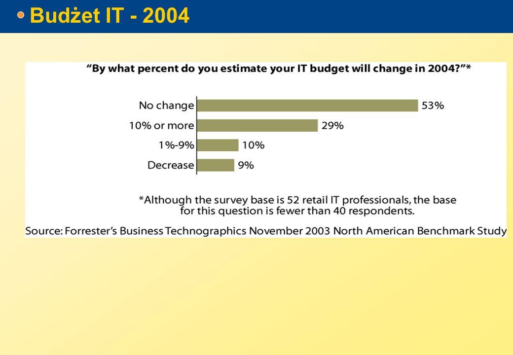 Budżet IT - 2004
