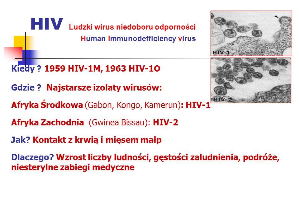 Kiedy ? 1959 HIV-1M, 1963 HIV-1O Gdzie ? Najstarsze izolaty wirusów: Afryka Środkowa (Gabon, Kongo, Kamerun): HIV-1 Afryka Zachodnia (Gwinea Bissau):